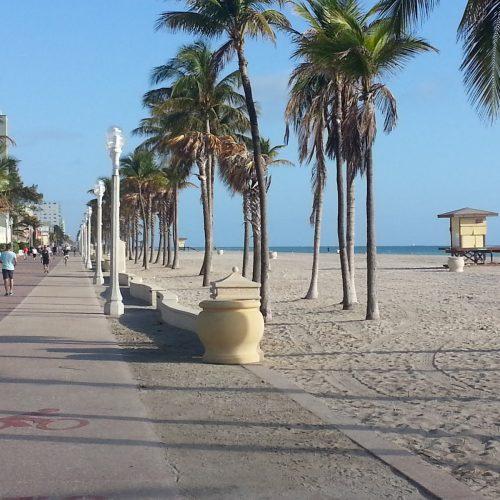 Beach Near Palm Harbor